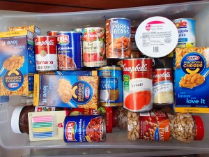 One of our tubs of food.  It gets tucked under a floorboard in the salon.